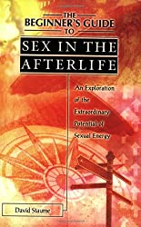 The Beginner's Guide to Sex in the Afterlife: An Exploratin of the Extraordinary Potential of Sexual Energy