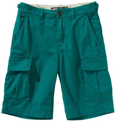 Vans Jungen Shorts Tremain, new teal, 18, VSSJ0OR (Vans Schuhe Kleidung)