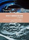 全球城镇化水问题丛书:城市地下水管理高级仿真与建模--UGROW