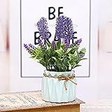 Künstliche potted cysincos Silk Blumen Arrangement Blume Succulent Pflanze mit Keramik-Topf Bonsai-Wohnzimmer-Dekoration, violett