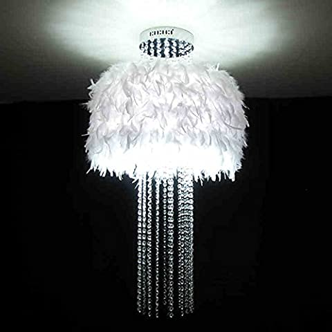 Sunjun&Light Moderne Minimaliste Creative Crystal White Feather LED plafonnier