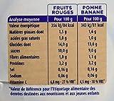 Blédina Gourdes Lactées Fruits Rouges/Pomme Banane de 10 à 36 mois 4 x 90 g