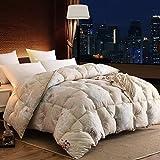 Die besten Gemütliche Bettwäsche Tröster Sets - Steppdecken Raum Bettdecken Verdicken sie Halten sie warm Bewertungen