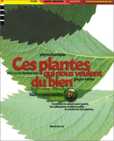 Ces plantes qui nous veulent du bien