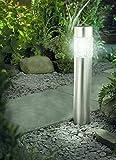 Tourwell Vertrieb Solarleuchte mit Bewegungsmelder Solar Gartenleuchte Glas Edelstahl 56 cm   Gartenleuchte Solar mit Bewegunsmelder und 4 super brite LED