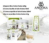 LÍNEA EN PAQUETE burro BIO leche: Jabón Bio + Crema Facial 50ml + Leche Corporal 100ml+ Mantequilla cacao4,5ml