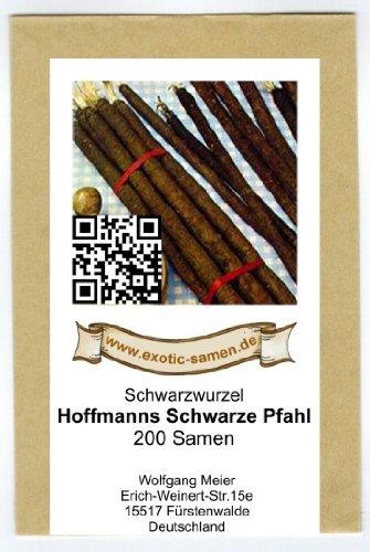 Schwarzwurzel - Hoffmanns Schwarze Pfahl - 200 Samen