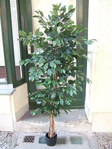 Künstlicher Ficus 1,80m grüne Blätter füllig Top Qualität