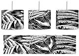 Monocrome, zarter Schmetterling auf Farnblatt inkl. Lampenfassung E27, Lampe mit Motivdruck, tolle Deckenlampe, Hängelampe, Pendelleuchte - Durchmesser 30cm - Dekoration mit Licht ideal für Wohnzimmer, Kinderzimmer, Schlafzimmer