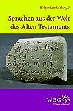 Holger Gzella: Sprachen aus der Welt des Alten Testaments