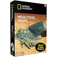 National Geographic Mega Fossil Mine – DIG Up 15 Véritable fossiles –&nbsp