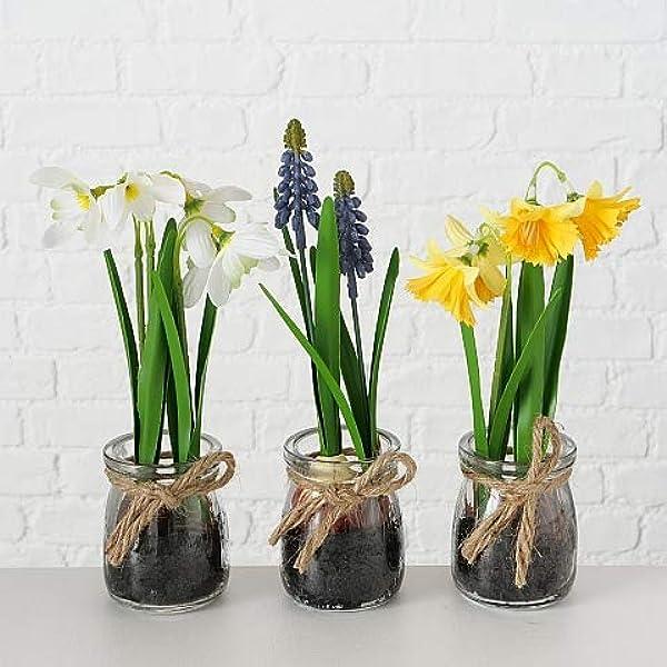 Lb H F 3er Set Künstliche Pflanzen Frühlingsblüher Kunstpflanze Als Dekopflanze Mit Glastopf Deko Ostern Frühling Set Küche Haushalt