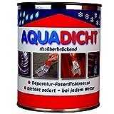 Aqua Dicht grau - Dose 1 L