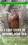 3 Easy Steps to Become Head Hen: a guide for ex-commercial chickens