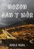 Noson gan y môr (Welsh Edition)