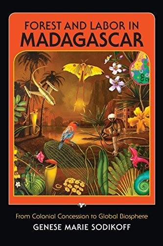Forest and Labor in Madagascar: From Colonial Concession to Global Biosphere by Sodikoff, Genese Marie (2012) Paperback