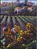 Fliesenwandbildbild - Ansicht von Toskana- von Clif Hadfield - Küche Aufkantung/Bad Dusche