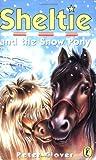 Sheltie and the Snow Pony