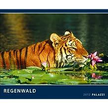 Regenwald 2012: Der grüne Planet