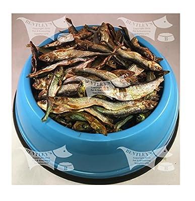 Bentley's Dried Sprats, Bulk Buy, Dried Fish - 1 kilo by Trixie