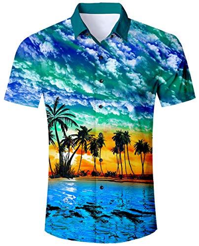 ALISISTER Hawaiihemd Herren kurzärmliges Hawaii Hemd 3D Palme Blatt Druckt Aloha Button Bluse Hemden Männer Sommer Urlaub Party Beachwear Outfits Himmelblau L -
