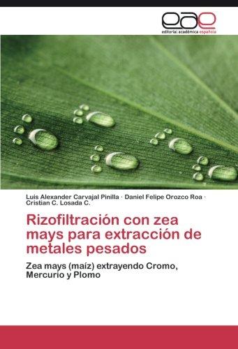 Rizofiltración con zea mays para extracción de metales pesados