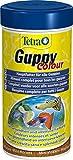 Tetra Guppy Color, Premium Flockenfutter 250ml
