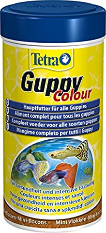Tetra Guppy Color (main feed for guppies and other live-growing tooth carps, miniflocks with color enhancers) 250 ml can