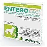 Trebifarma Enterolac Mangime Complementare in Polvere per Cani/Gatti - Supporto Gastroenterico - 60 gr