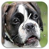 Stil.Zeit Deutscher Boxer Welpe im Gras, Wanduhr Quadratisch Durchmesser 28cm mit weißen Spitzen Zeigern und Ziffernblatt