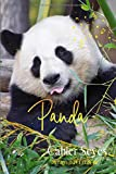 Cahier: A réglure seyès idéal pour la rentrée scolaire fans et amateurs de panda