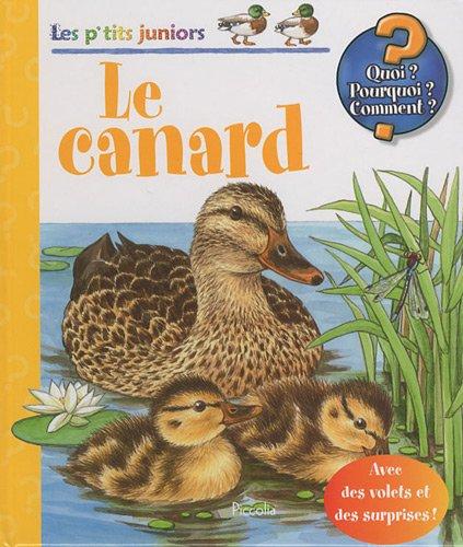 Le canard par Piccolia
