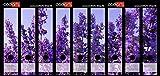 Set 9 Stück Ordner-Etiketten selbstklebend Ordnerrücken Sticker Lila Lavendelfeld
