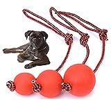 AGIA TEX Germany Hunde-Ball mit und ohne Seil als Wurfball Hundespielzeug 1 Stück S Ball am Seil