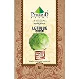 Best Lettuces - Pyramid Round Lettuce Iceberg Seeds (2g, Green) Review