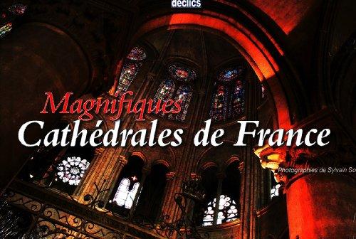 Magnifiques Cathédrales de France