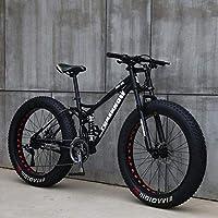 LJLYL Vélo de Montagne Fat Tire pour Adolescents d'adultes Hommes et Femmes, Cadre en Acier à Haute teneur en Carbone, Suspension Double à Queue Souple, Frein à Disque mécanique