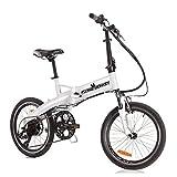 Flying Donkey e-Bike Pedelec Elektro-Fahrrad City Elektrisches Fahrrad Klapprad Citybike mit Elektromotor