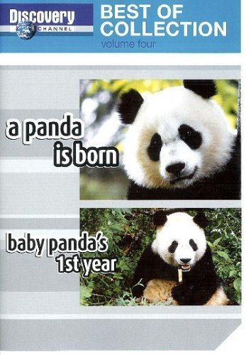 Preisvergleich Produktbild Discovery Channel - Best of Collection -- A Panda is Born / Baby Panda's 1st Year [DVD]