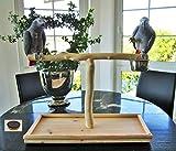 Freisitz für Tisch, Anrichte, Schrank, Papageienfreisitz, Papageienspielzeug
