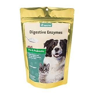 NaturVet Digestive Enzyme Powder 60 day NaturVet Digestive Enzyme Powder 60 day 51GENgivQGL
