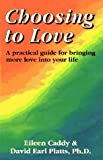 Choosing to Love: A Practical Guide for Bringing More Love into Your Life