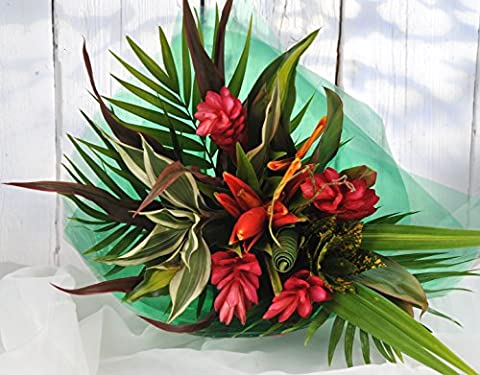 Striking Beauty Tropical Fresh Flower Bouquet - Send Flowers Delivered Next Day FREE 7 Days a Week - Unusual Gift Arrangement of Exotic Cut Flowers with Delivery UK Wide
