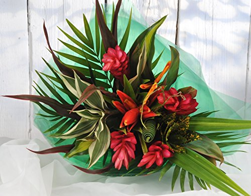 striking-beauty-tropical-fresh-flower-bouquet-flowers-next-day-delivery-free-7-days-a-week-unusual-a