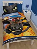 Character world Dreamworks Dragons Toothless Single Panel Duvet Set
