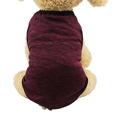 Bayliney Kalt Winter Hund Haustier Mantel Jacke Weste Warm Outfit Kleider Zum Klein Mittel Groß Hunde Klassisch T-Shirt Kleidung HüNdchen äRmellos Bekleidung(Weinrot,S)