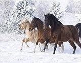 YEESAM ART Neuheiten Malen nach Zahlen Erwachsene Kinder, DREI Pferde im Schnee Berge 40x50 cm Leinen Segeltuch, DIY ölgemälde Weihnachten Geschenke