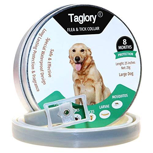 Taglory Floh- und Zeckenhalsband für Hunde, 8 Monate, wasserdicht, Natur- und sicher, 63,5 cm, passend für kleine und mittelgroße Hunde und Katzen