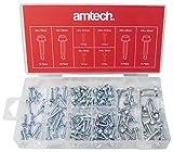 Am-Tech 120 piezas autoperforantes tornillo de fijación, S6295