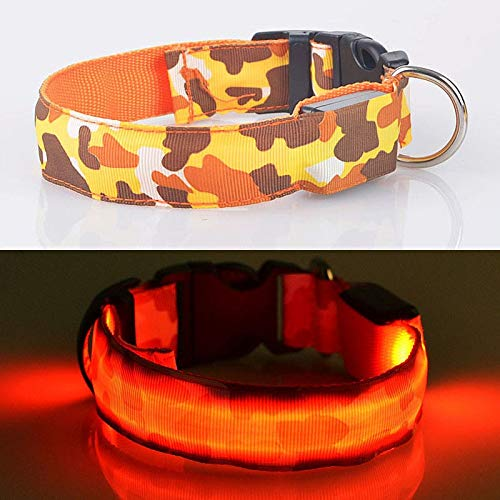 WHFDRHCWXQ Haustierhalsband LED Hundehalsband Nylon Camouflage Nachtbeleuchtung Sicherheit LED Modus Blinkende Hund Halskette Halsband,USB Orange,L
